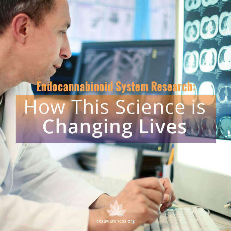 endocannabinoid system research and science